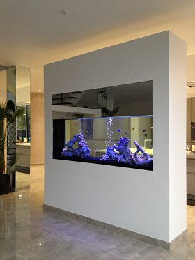 Bespoke Build Wall Aquarium